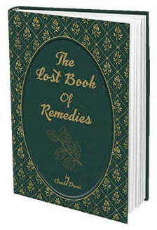 The Lost Book Of Remedies Cover