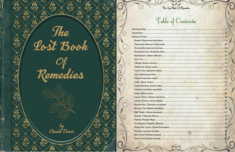 The Lost Book of Remedies ToC