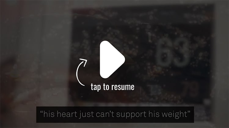 Resurge Video Preview
